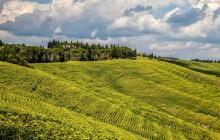 Visite de Forence - Radda in Chianti